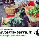 e' nato il nuovo sito: WWW.TERRA-TERRA.IT